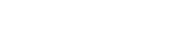 Wavepoint Interactive Logo White